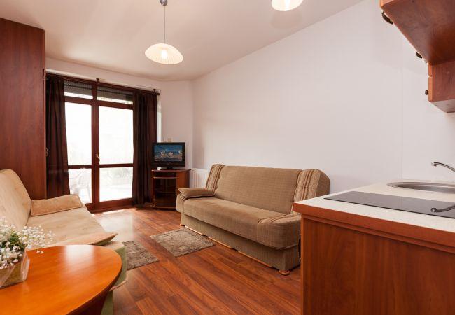 Wohnzimmer, Kochnische, Sofas, Fernseher, Kleiderschrank, Herd, Spüle, Miete