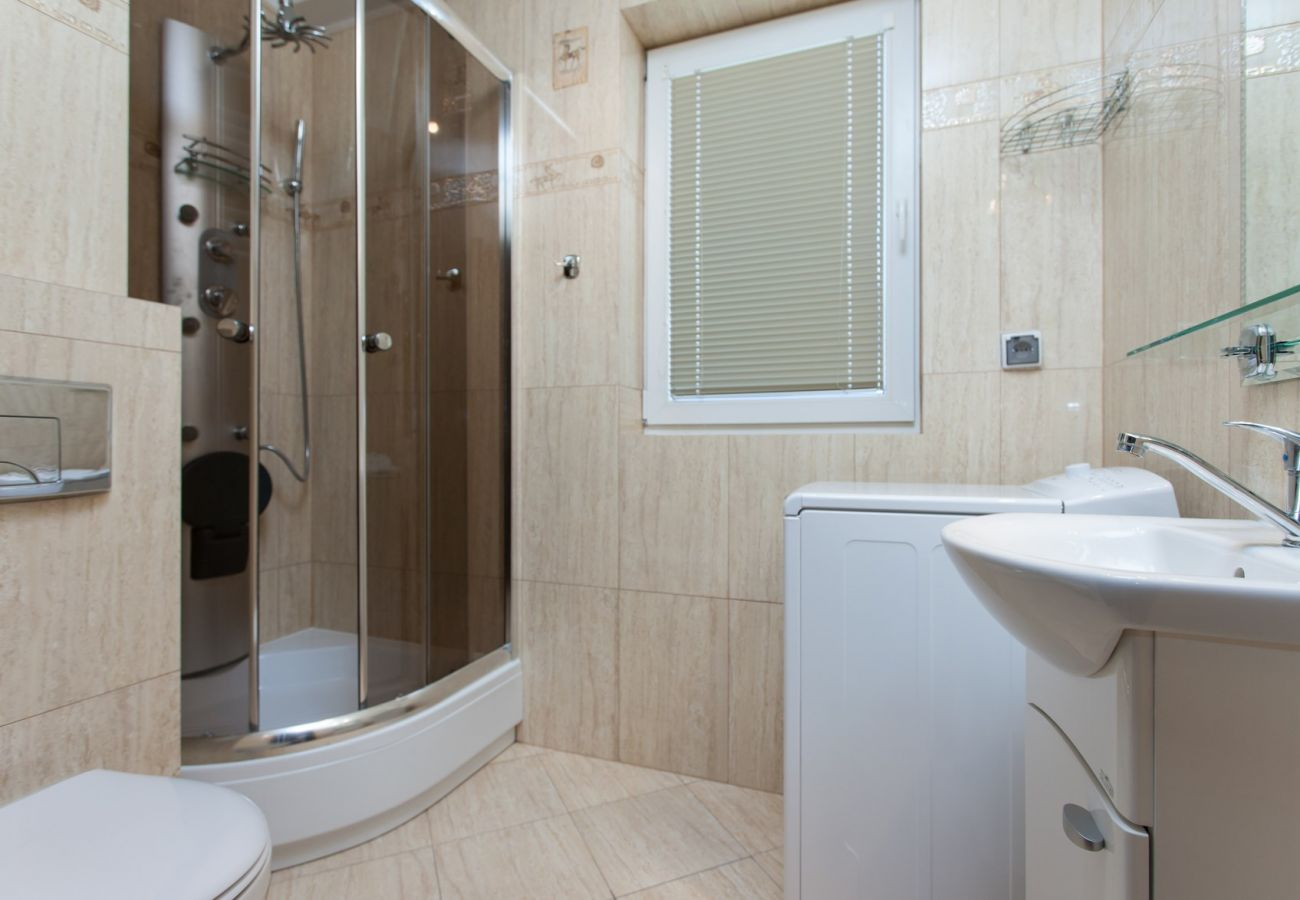 shower, toilet, washbasin, mirror