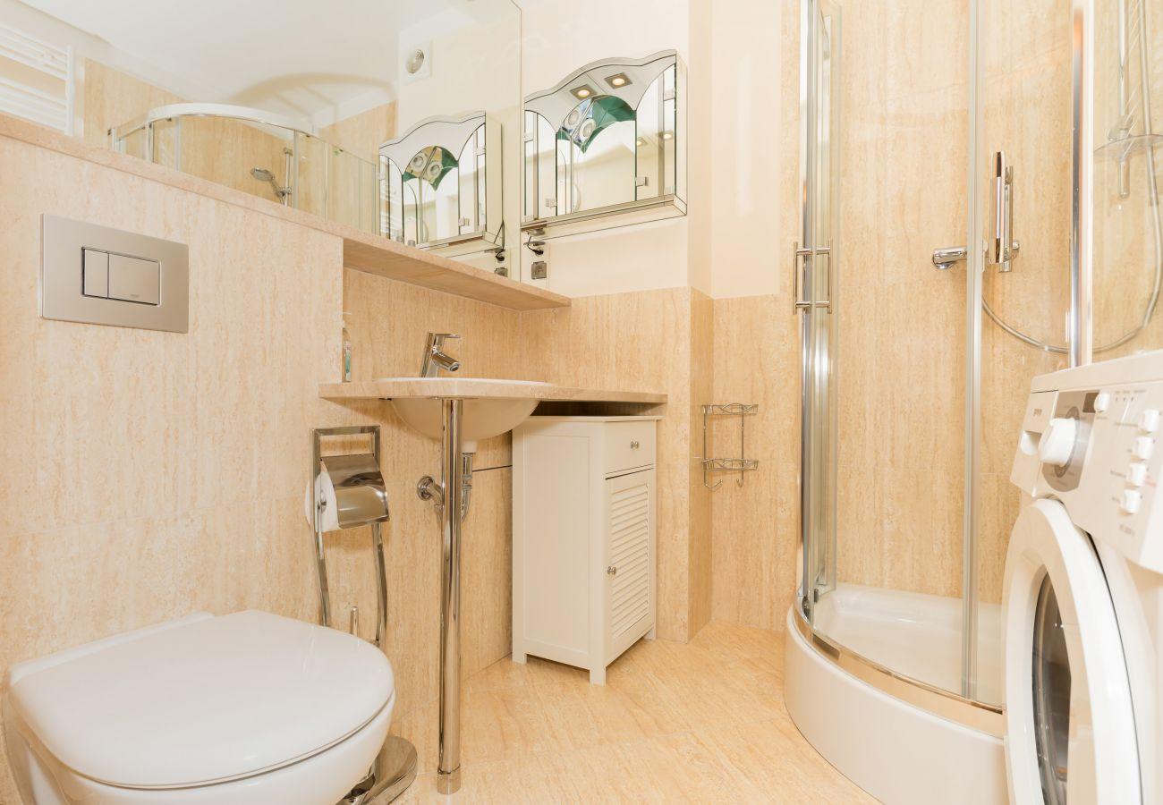 bathroom, shower, mirror, sink, toilet, washing machine, rent