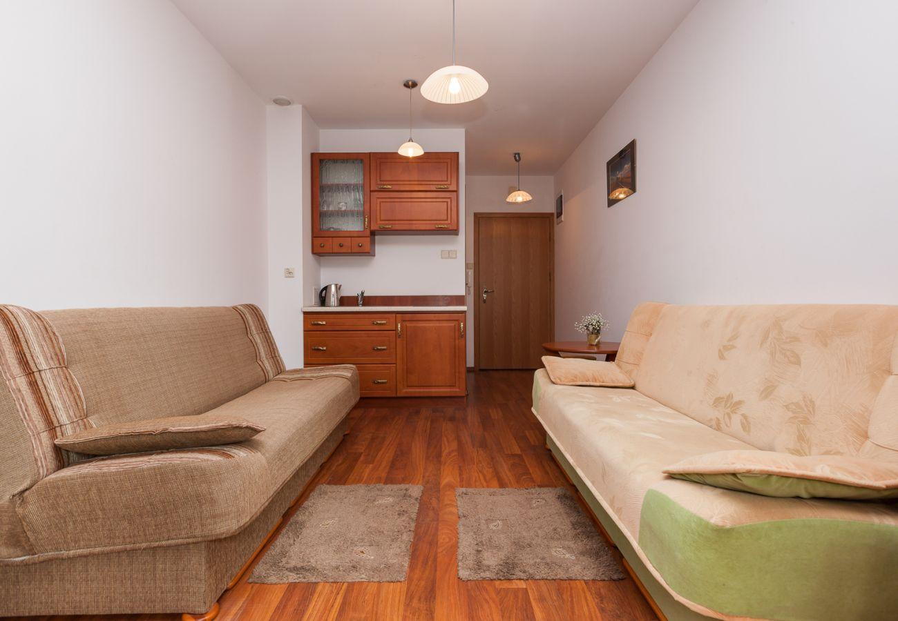 living room, sofas, kitchenette, rent