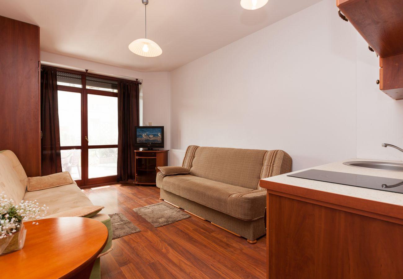 living room, kitchenette, sofas, tv, wardrobe, stove, sink, rent