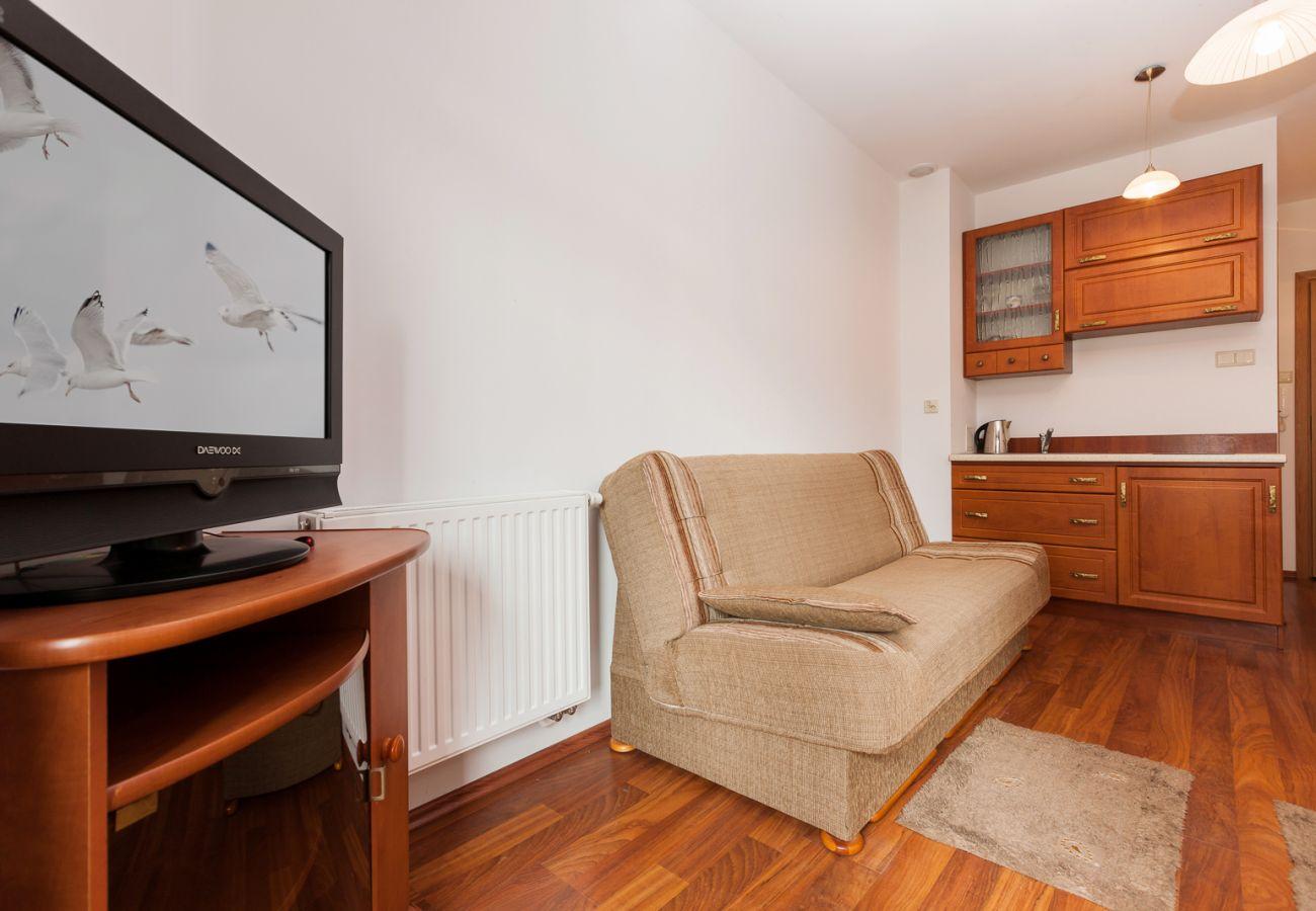living room, sofa, tv, kitchenette, stove, kettle, sink, cupboards, rent
