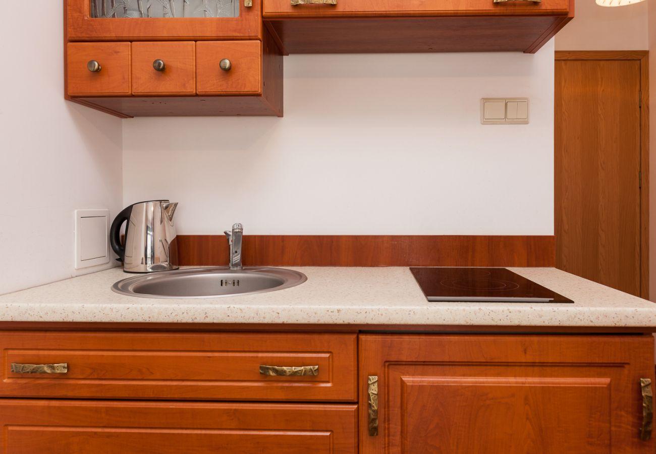 kitchenette, kitchen, stove, kettle, sink, cupboards, rent