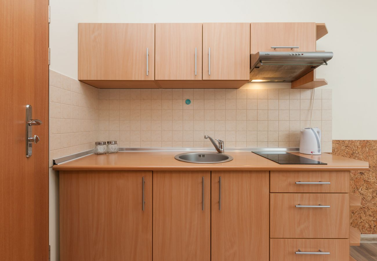 kitchenette, kitchen, kettle, stove, cupboards, rent