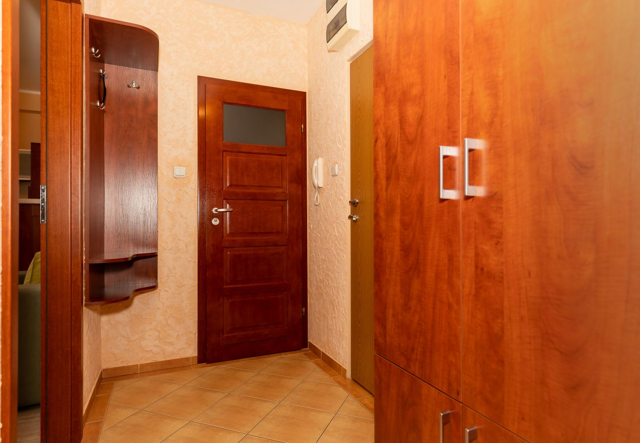 interior, wardrobe, entrance, corridor, rent