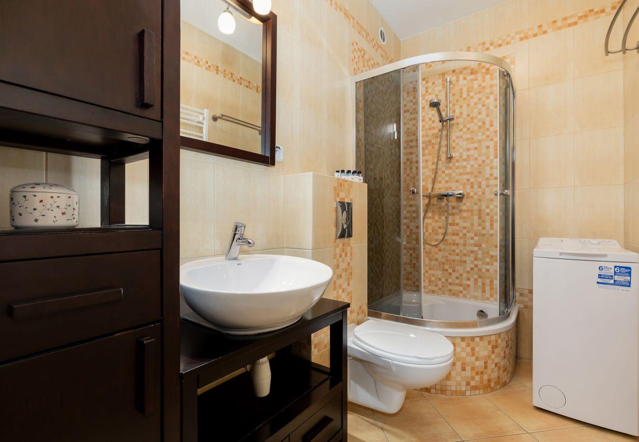 bathroom, shower, sink, toilet, mirror, washing machine, rent