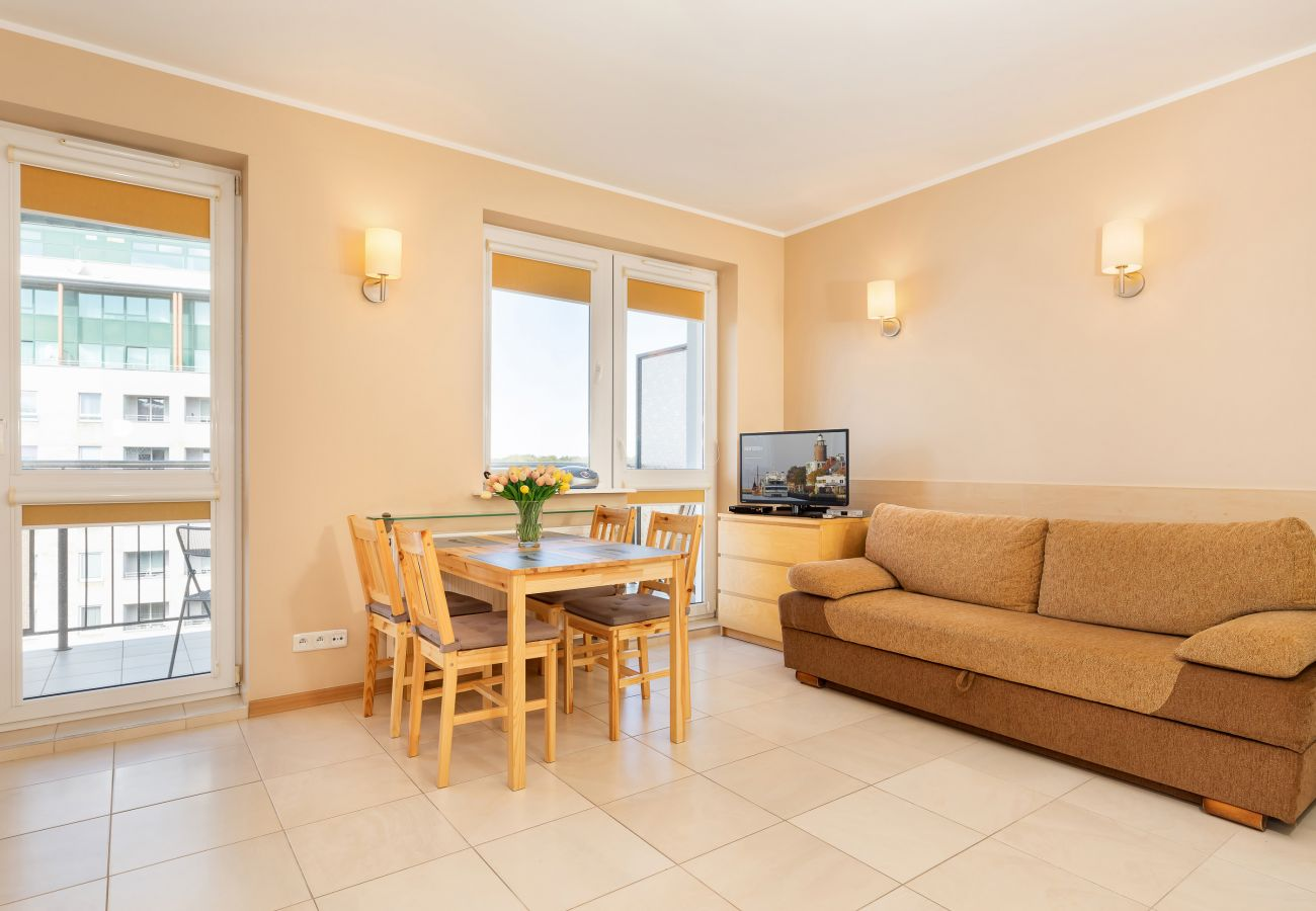 living room, dining area, tv, sofa, kitchenette, dining table, chairs, microwave, coffee machine, wardrobe, mirror, rent