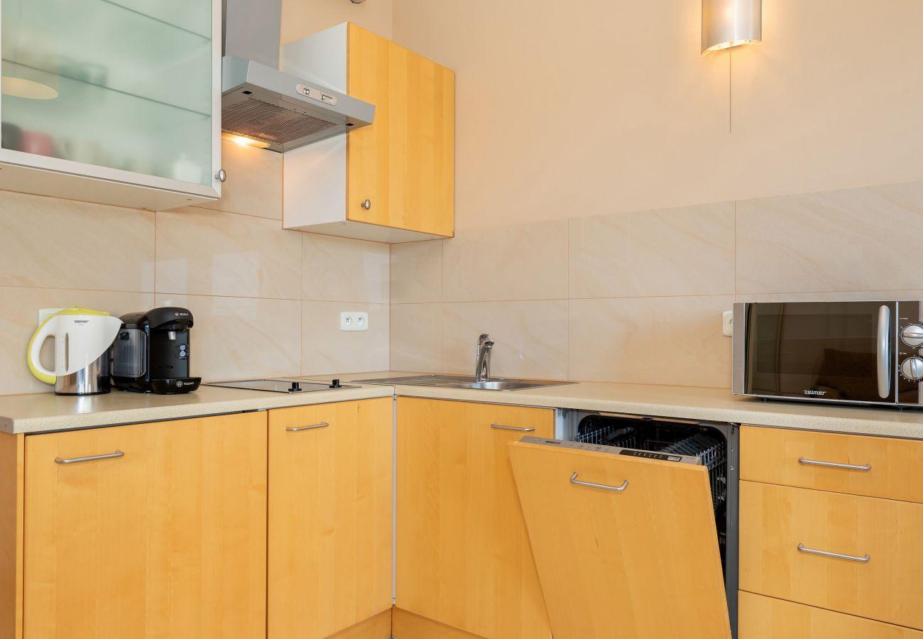 kitchen, kitchenette, stove, dishwasher, microwave, coffee machine, kettle, sink, cupboards, rent