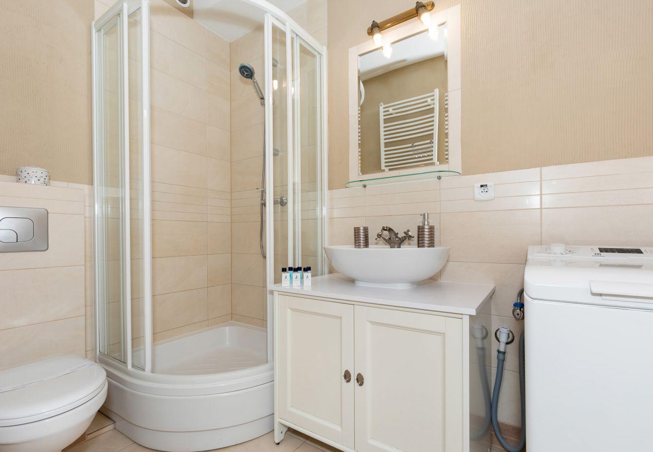 bathroom, shower, sink, toilet, washing machine, mirror, rent
