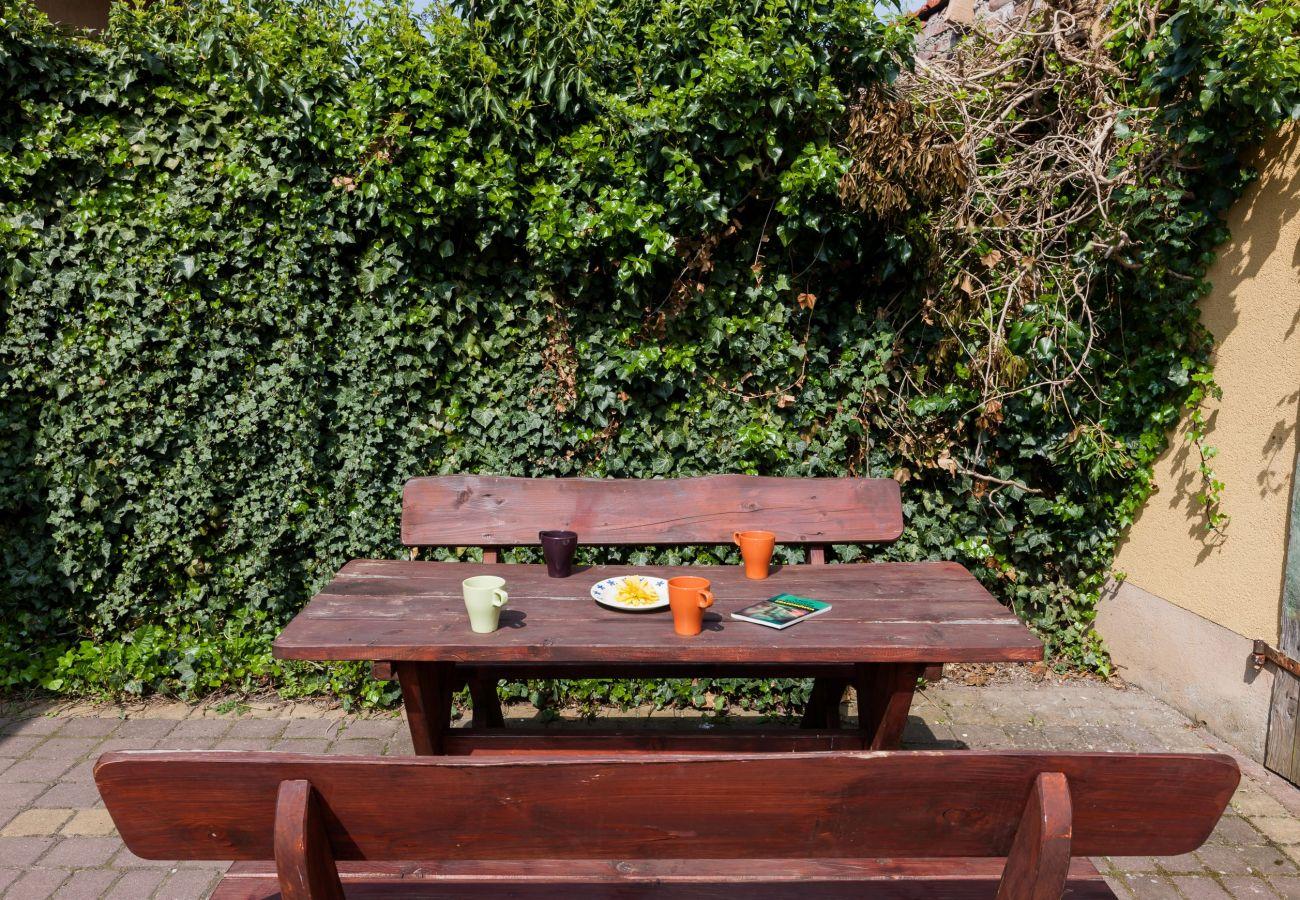 ogród, taras, grill, ławka
