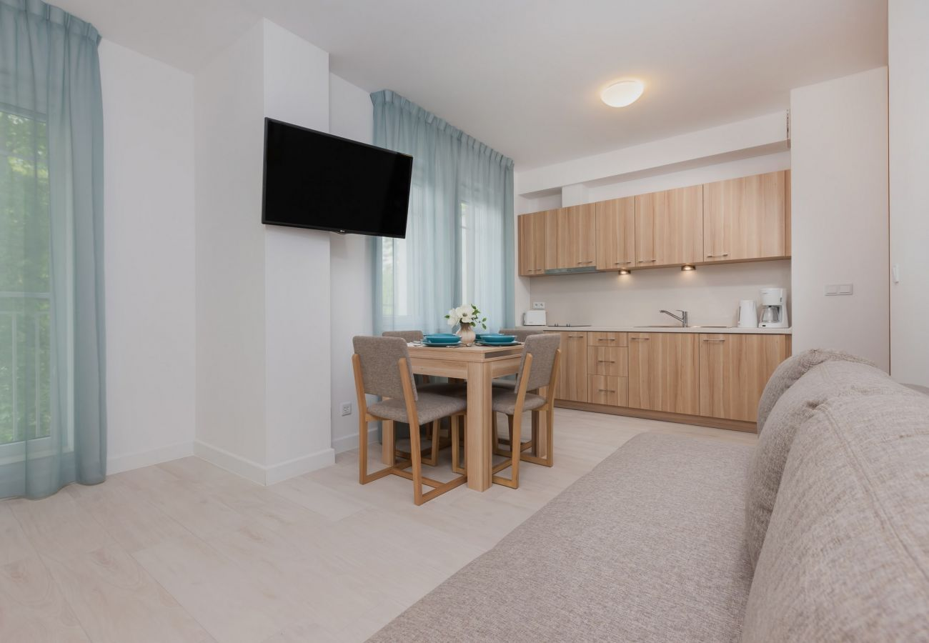 pokój, sofa, stół, krzesło, okno, TV