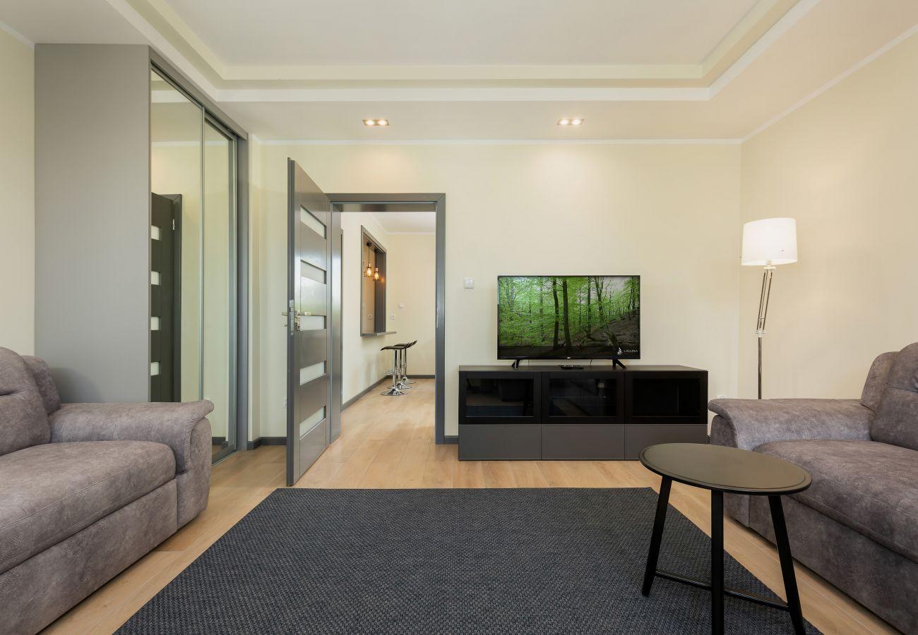 pokój, sofa, okno, wynajem, TV, szafa