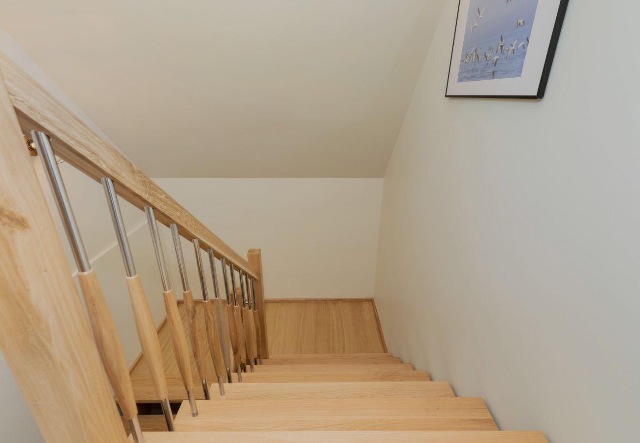 dom, schody, obraz, piętro, wynajem