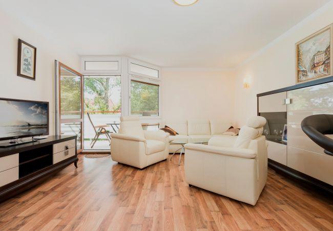 pokój dzienny, kanapa, fotel, telewizor, okno, stolik kawowy, wynajem