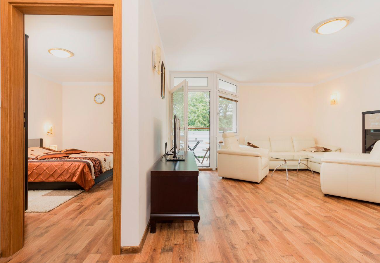 pokój dzienny, telewizor, fotel, stolik kawowy, sofa, drzwi, sypialnia, łóżko podwójne, wynajem