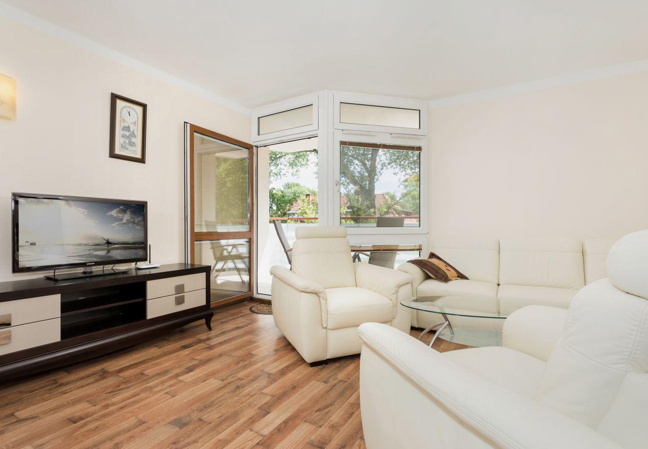 salon, sofa, telewizor, stolik kawowy, fotel, okno, wynajem