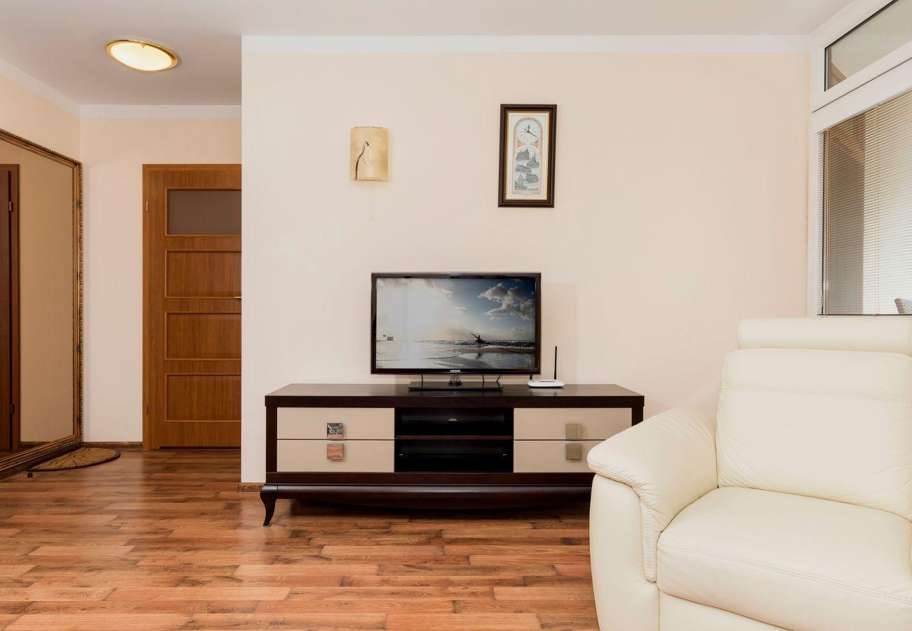 pokój dzienny, telewizor, fotel, lustro, drzwi, wynajem