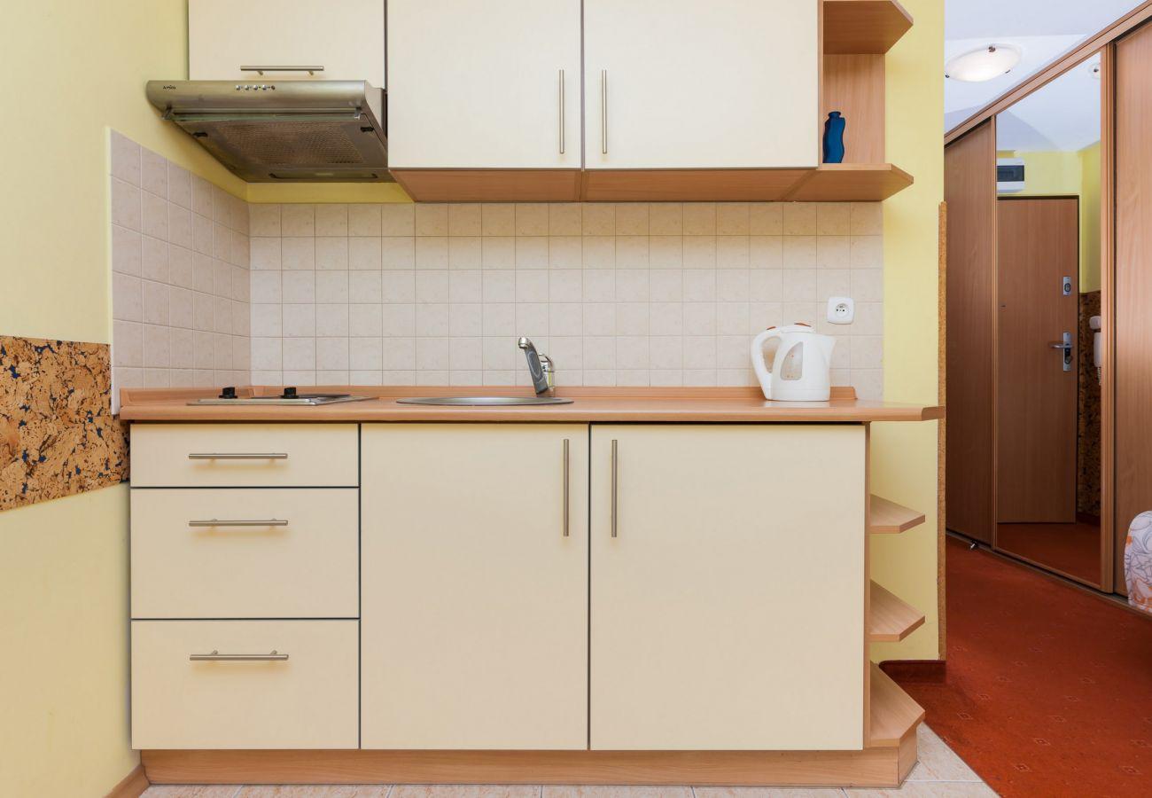 pokój dzienny, aneks kuchenny, umywalka, czajnik, kuchenka, sofa, łóżko pojedyncze, wynajem