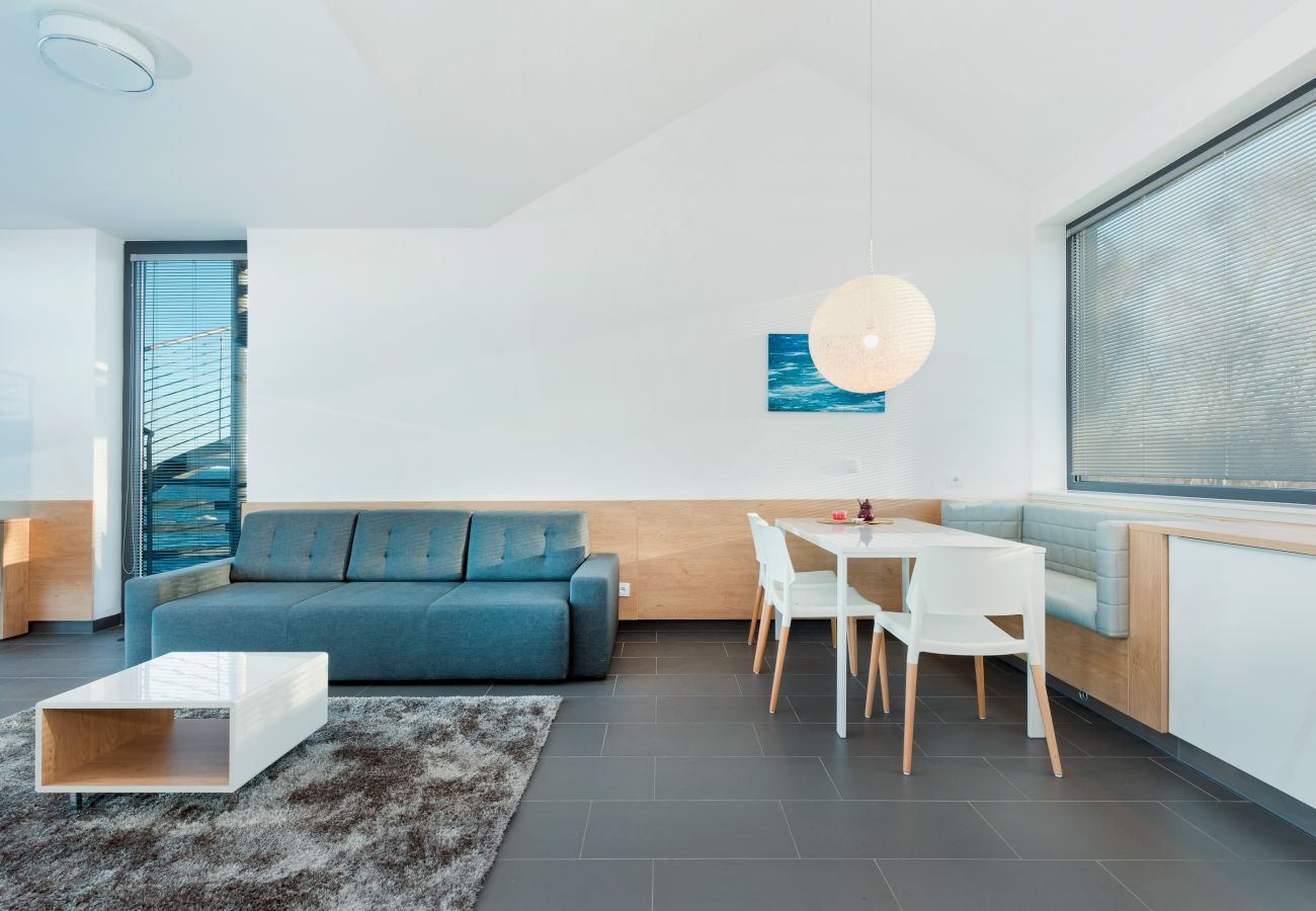salon, sofa, stolik kawowy, widok na zewnątrz, jadalnia, aneks kuchenny, wynajem