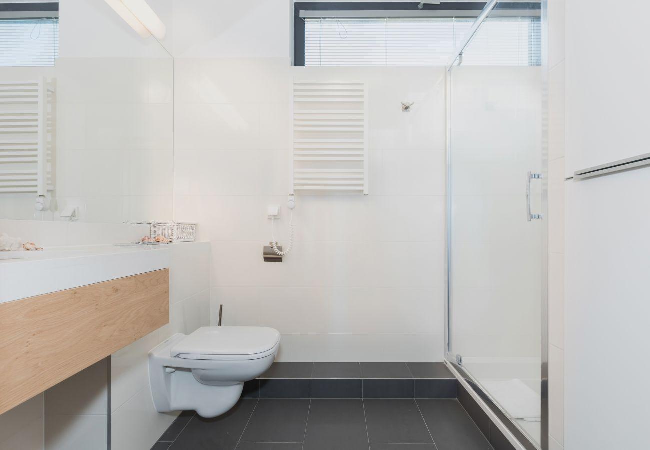 łazienka, prysznic, umywalka, toaleta, lustro, ręcznik, wynajem