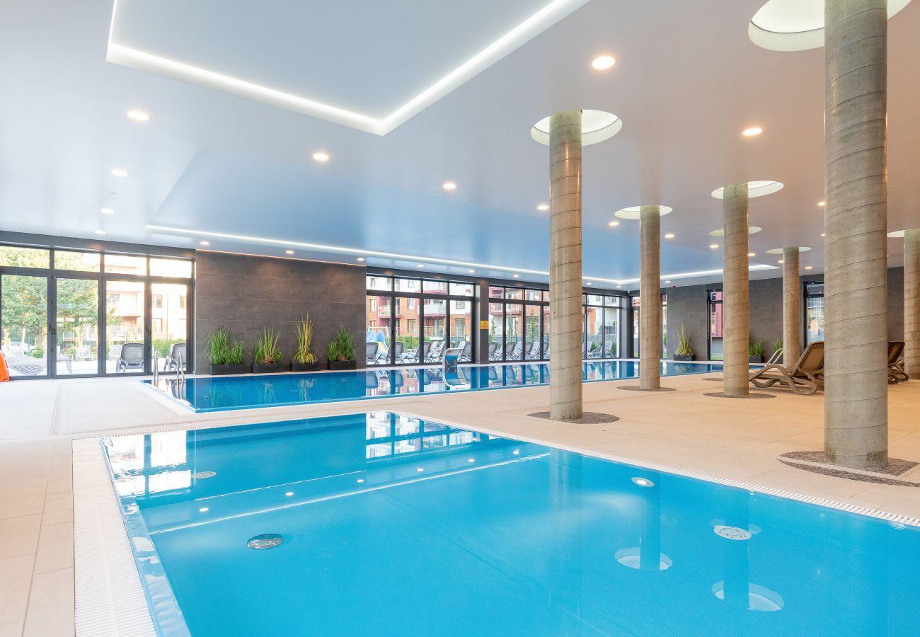 basen, wyposażenie, wnętrze, basen wewnętrzny, basen kryty, wynajem