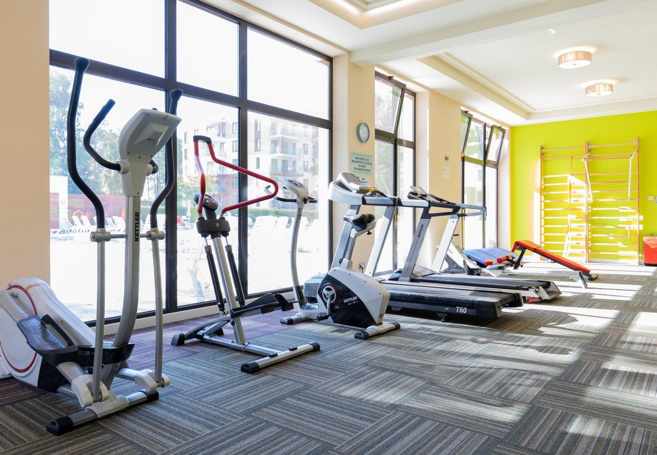 siłownia, mieszkanie, wnętrze, wnętrze budynku mieszkalnego, ciężary, ćwiczenia, maszyna do ćwiczeń, wynajem