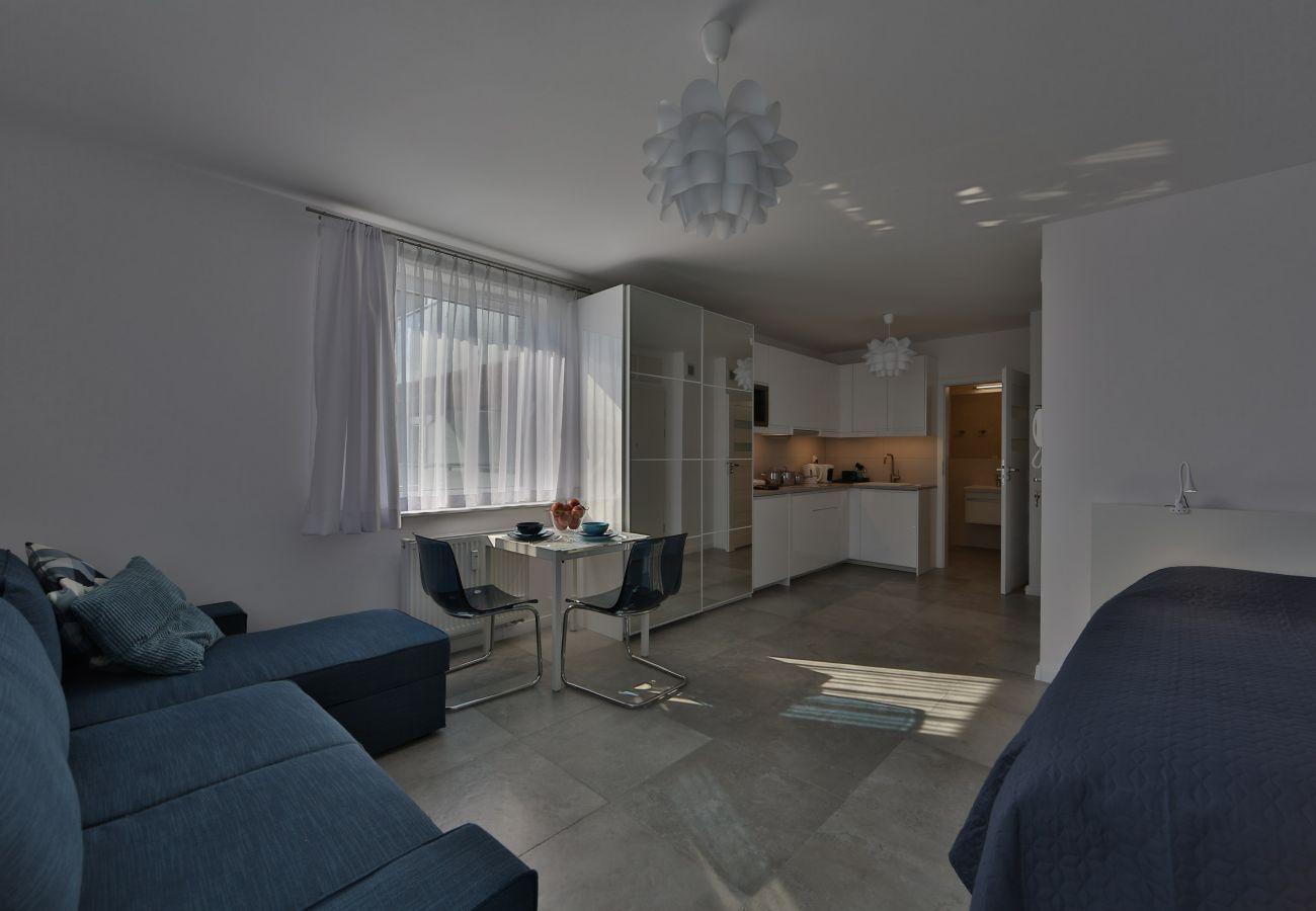 salon, sofa, podwójne łóżko, jadalnia, stół, krzesła, szafa, lustro, telewizor, mieszkanie, wnętrze, wynajem