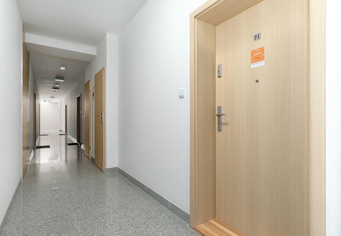 wnętrze, korytarz, winda, mieszkanie, apartamentowiec, apartamentowiec wnętrze, wynajem
