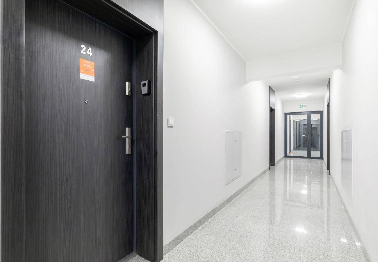 wnętrze, mieszkanie, apartamentowiec, apartamentowiec wnętrze, korytarz, wynajem