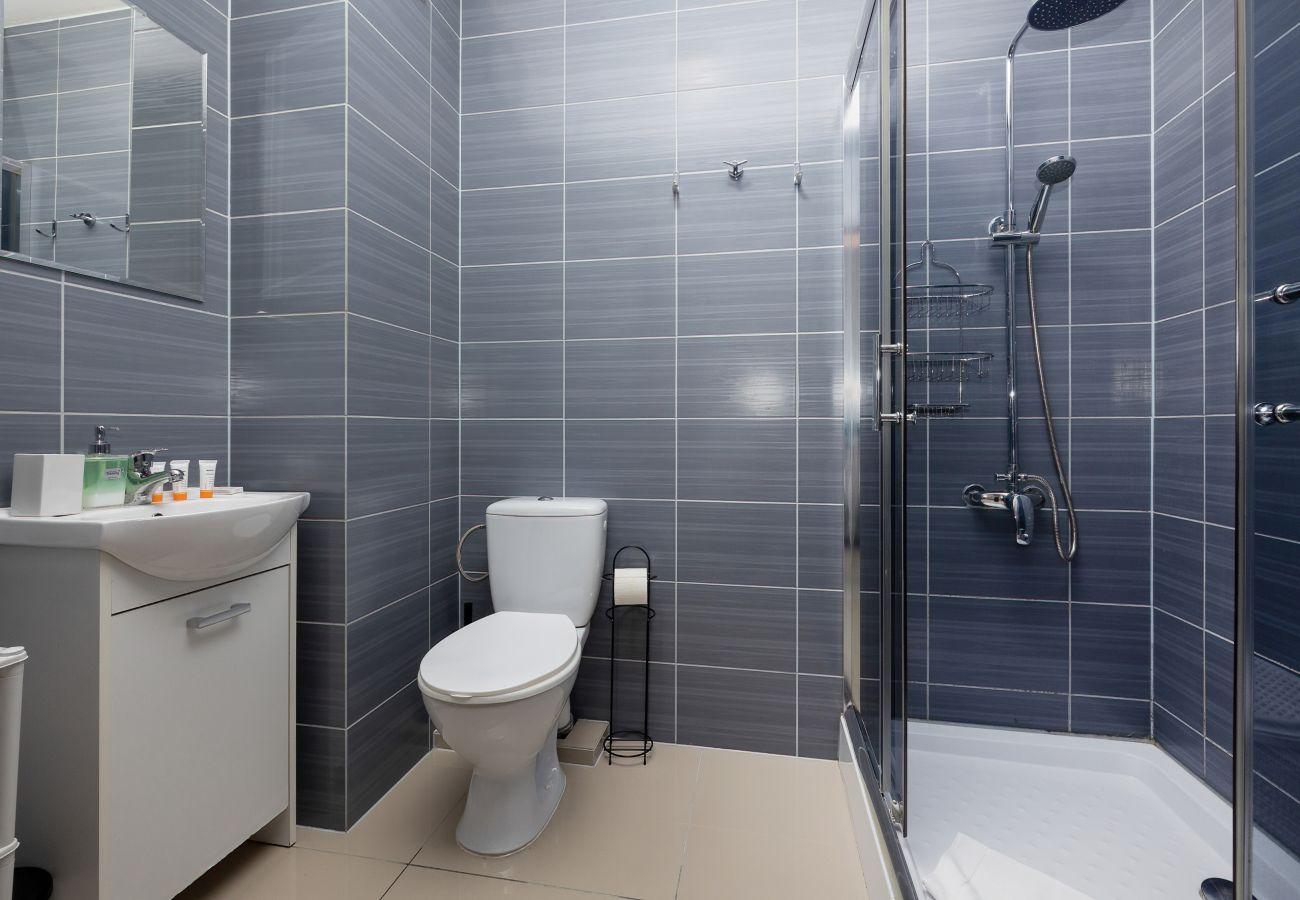 łazienka, prysznic, toaleta, lustro, ręczniki, mieszkanie, wnętrze, wynajem, apartament