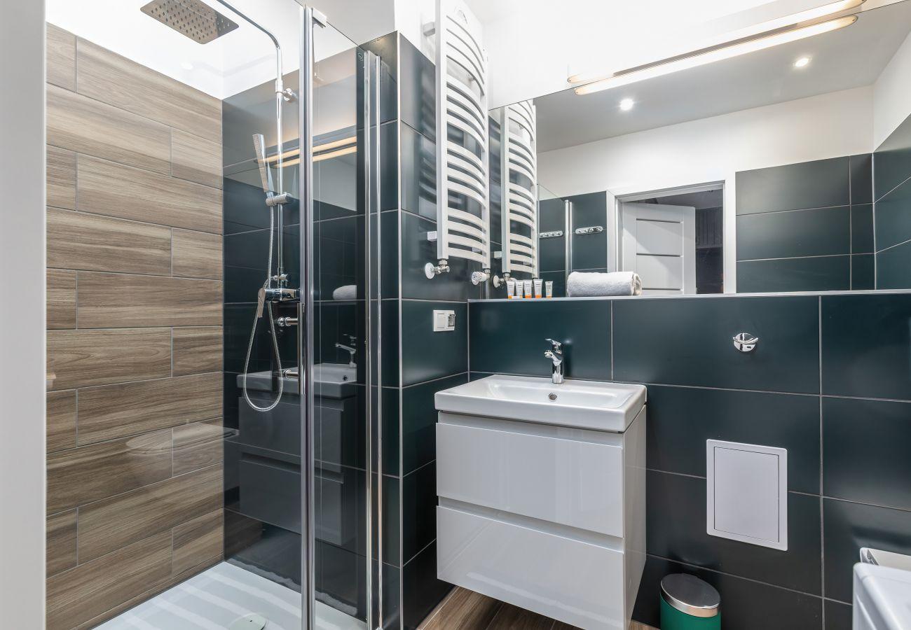 łazienka, umywalka, lustro, toaleta, prysznic, wynajem